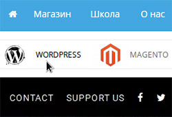 Иконки в меню WordPress