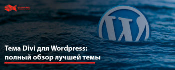 Divi wordpress